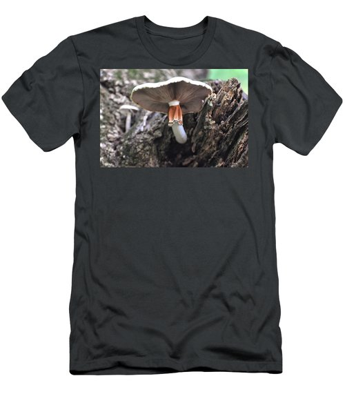 Amanita Men's T-Shirt (Slim Fit) by Chris Flees