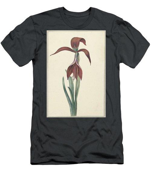 Amaryllis Formosissima Men's T-Shirt (Athletic Fit)