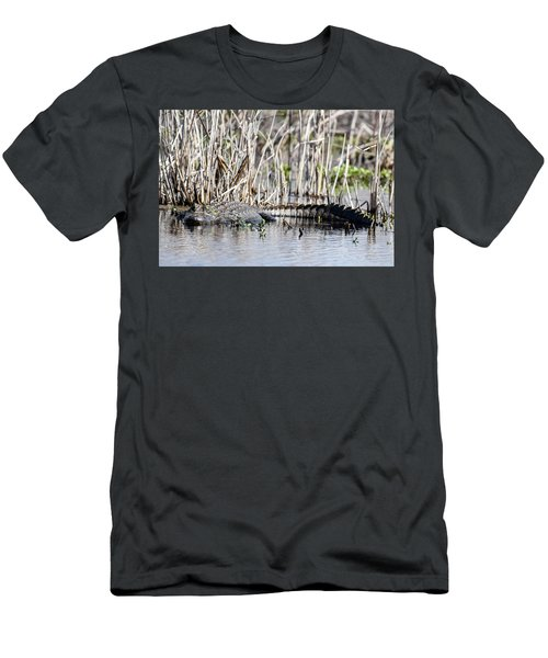 American Alligator Men's T-Shirt (Slim Fit) by Gary Wightman