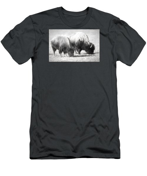 American Bison In Charcoal Men's T-Shirt (Slim Fit) by Linda Phelps