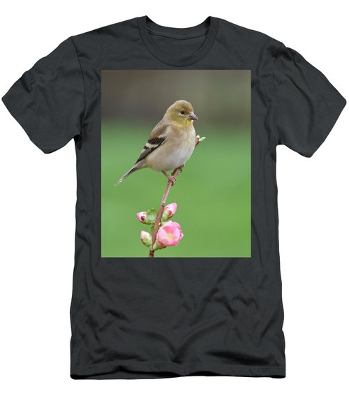 Men's T-Shirt (Slim Fit) featuring the photograph American Goldfinch by Doug Herr