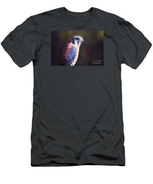 American Kestrel Portrait Men's T-Shirt (Athletic Fit)