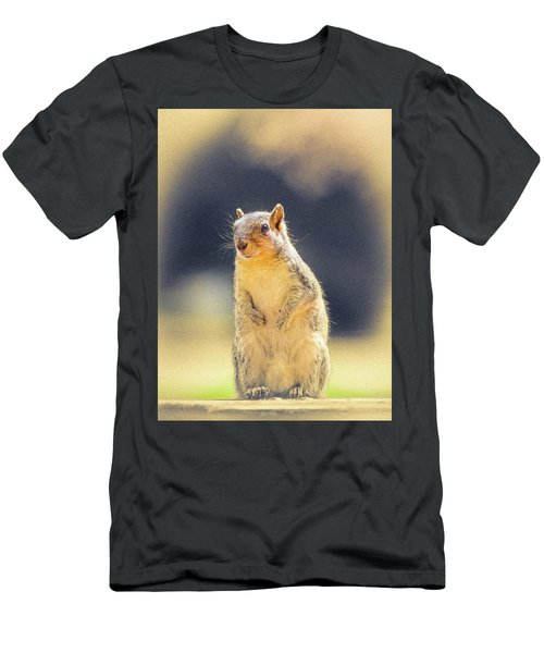 American Red Squirrel Men's T-Shirt (Athletic Fit)