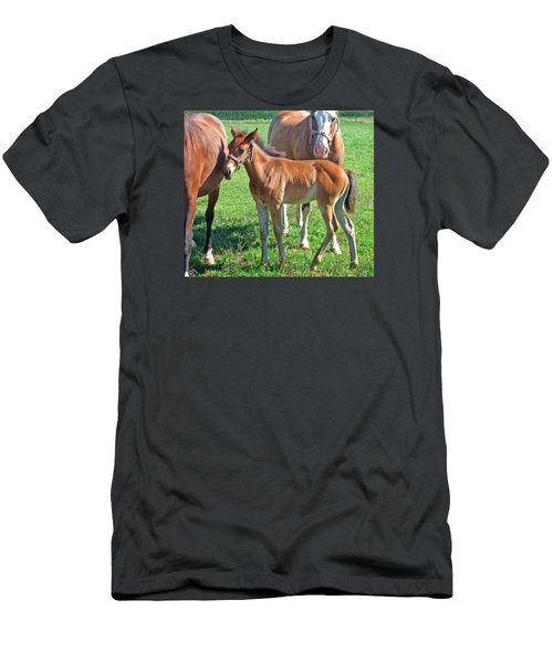 Amish Pony Men's T-Shirt (Athletic Fit)