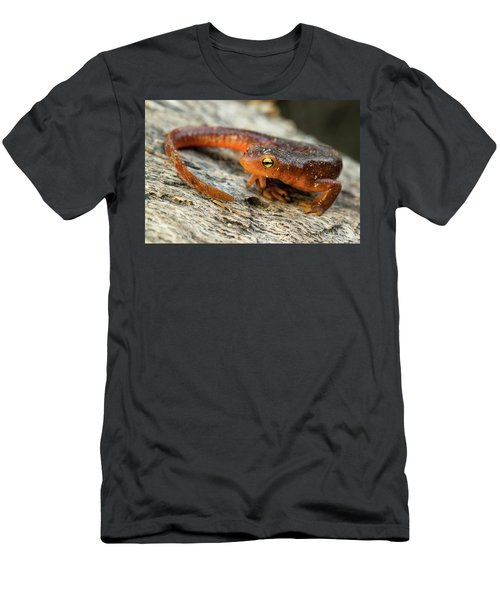 Amphibious Men's T-Shirt (Slim Fit) by Scott Warner