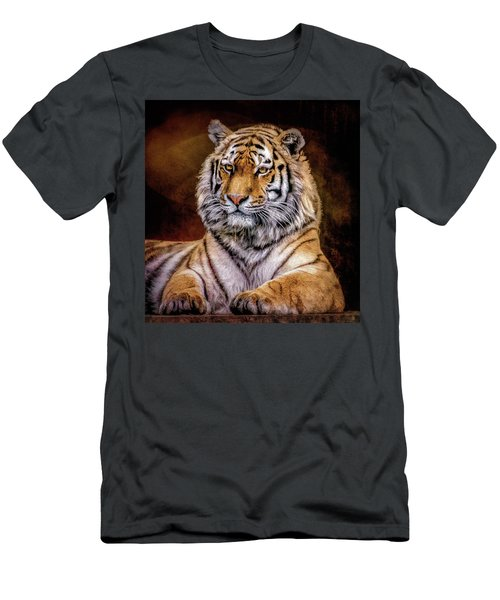 Amur Tiger Men's T-Shirt (Slim Fit) by Brian Tarr