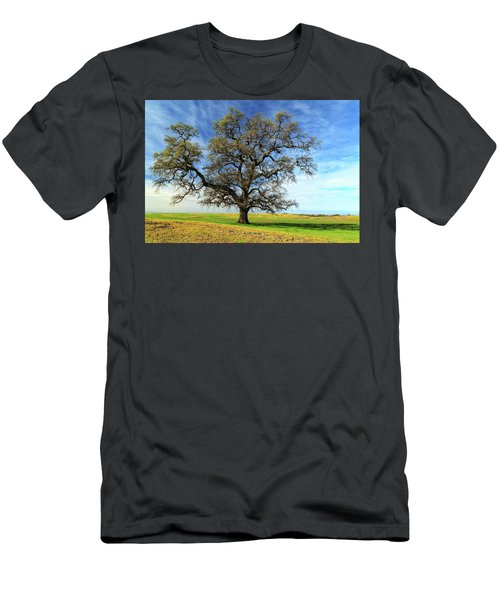 An Oak In Spring Men's T-Shirt (Slim Fit) by James Eddy