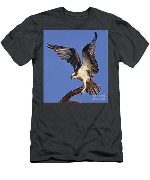 Angel Osprey Men's T-Shirt (Athletic Fit)