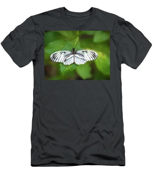 Angry Butterfly With A Mustache Men's T-Shirt (Athletic Fit)