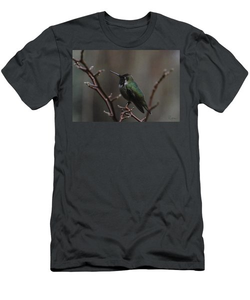 Anna Rainwings Men's T-Shirt (Athletic Fit)