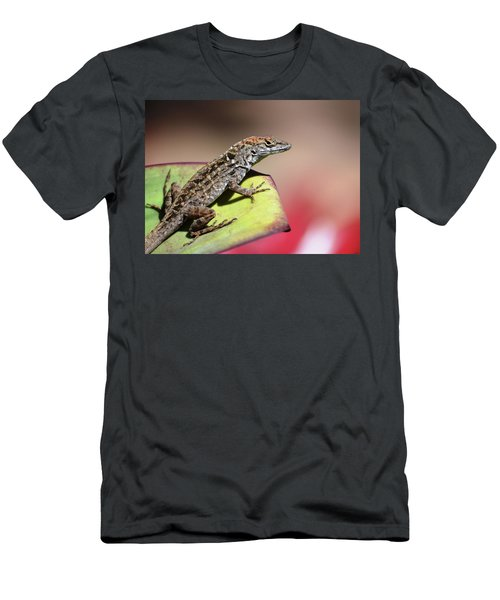 Anole In Rose Men's T-Shirt (Athletic Fit)