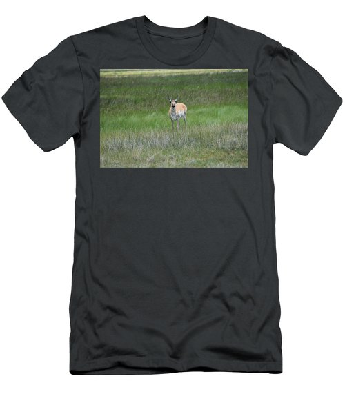 Prong Horned Antelope Lake John Swa Co Men's T-Shirt (Athletic Fit)
