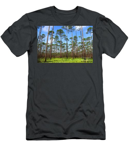Appalachicola National Forest Men's T-Shirt (Athletic Fit)