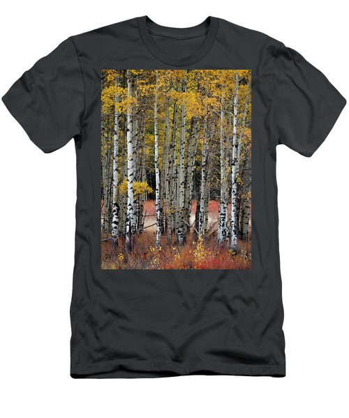Appreciation Men's T-Shirt (Athletic Fit)