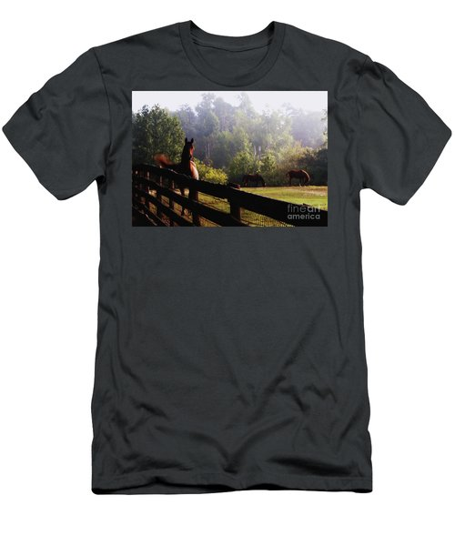 Men's T-Shirt (Athletic Fit) featuring the painting Arabian Horses In Field by Debra Crank