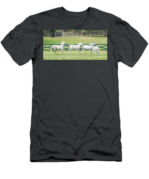 Arabian Horses Men's T-Shirt (Athletic Fit)