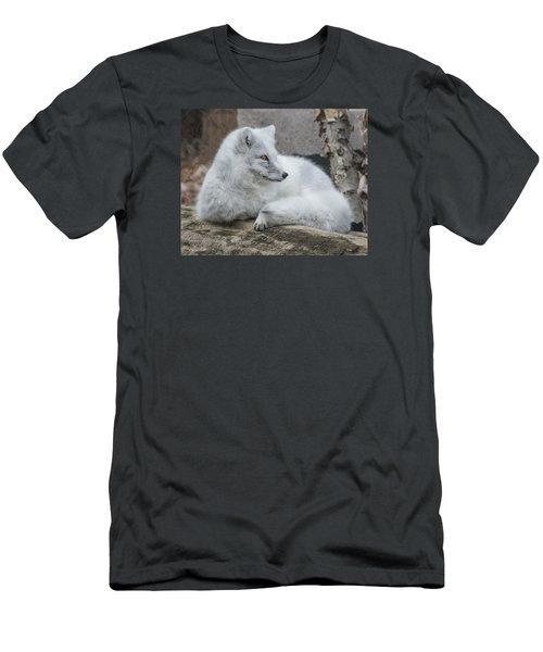 Arctic Fox Profile Men's T-Shirt (Athletic Fit)