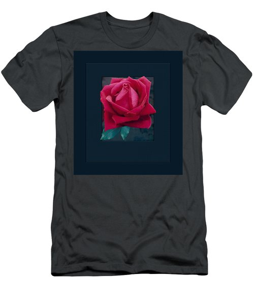 Rose Of Many Colors Men's T-Shirt (Athletic Fit)
