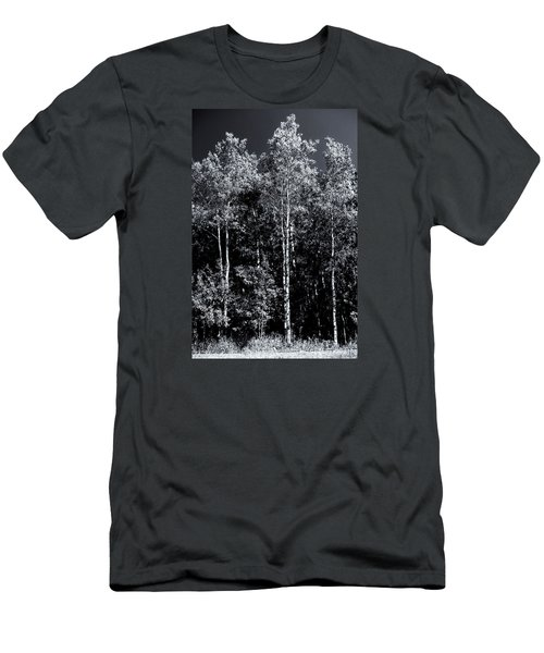 Aspen Drama Men's T-Shirt (Slim Fit) by Shelly Gunderson