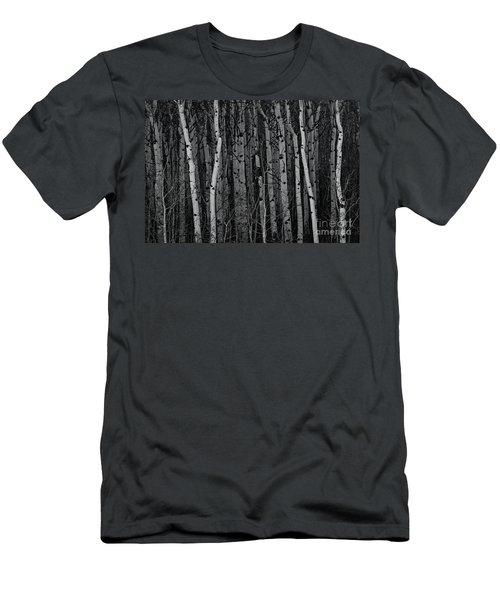 Aspen Forest Men's T-Shirt (Slim Fit) by Brad Allen Fine Art