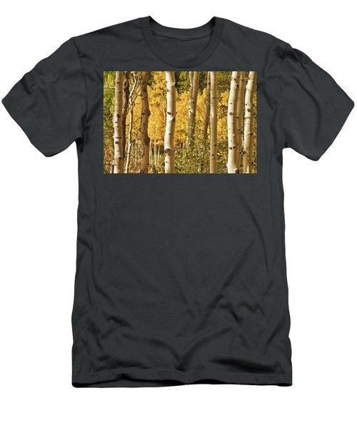 Aspen Gold Men's T-Shirt (Athletic Fit)