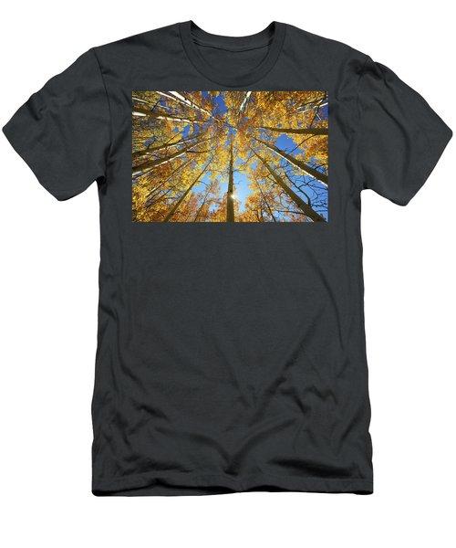 Aspen Tree Canopy 2 Men's T-Shirt (Athletic Fit)