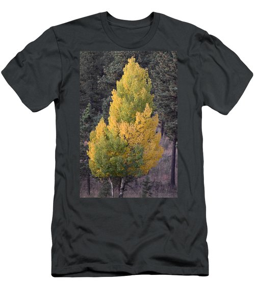 Aspen Tree Fall Colors Co Men's T-Shirt (Athletic Fit)