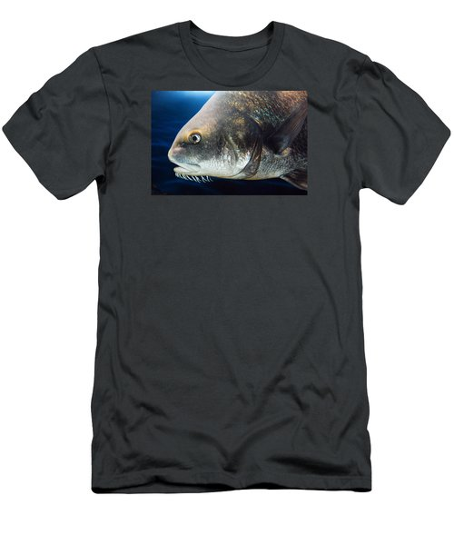 Men's T-Shirt (Slim Fit) featuring the photograph Atlantic Cod by James Kirkikis