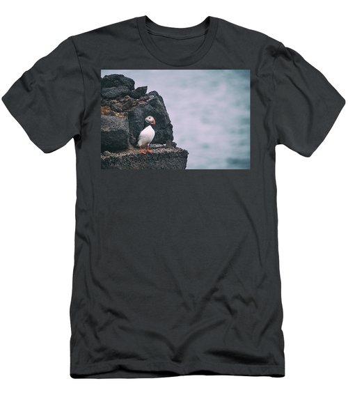 Atlantic Puffin Men's T-Shirt (Athletic Fit)
