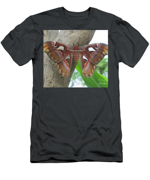 Men's T-Shirt (Slim Fit) featuring the photograph Atlas Butterfly by Jeepee Aero