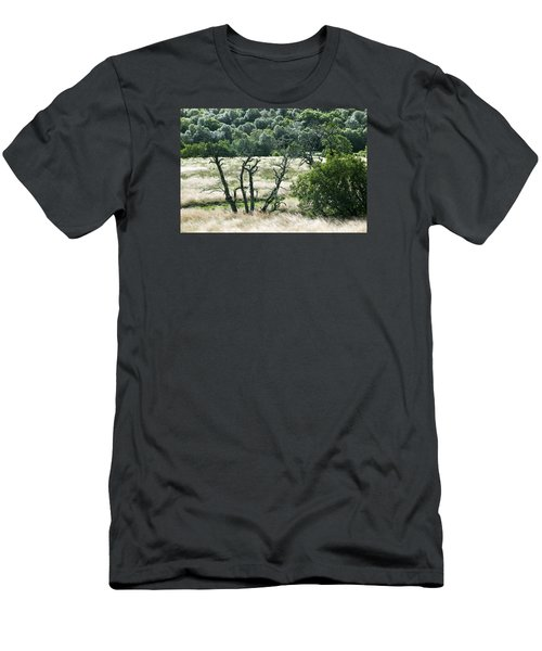 Autumn And Grass In Isle Of Skye, Uk Men's T-Shirt (Slim Fit) by Dubi Roman