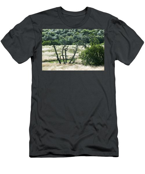 Autumn And Grass In Isle Of Skye, Uk Men's T-Shirt (Athletic Fit)