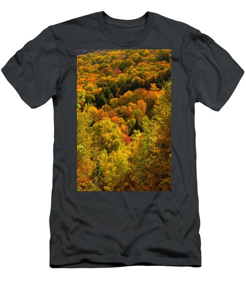 Autumn At Acadia Men's T-Shirt (Athletic Fit)