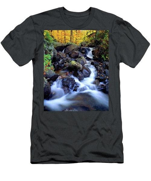 Autumn Cascade Men's T-Shirt (Athletic Fit)