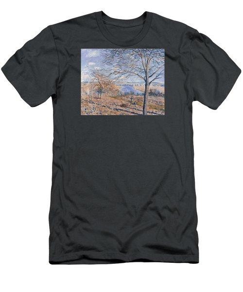 Autumn Effect Men's T-Shirt (Slim Fit) by Alferd Sisley