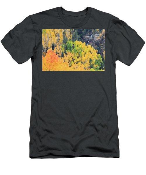 Autumn Glory Men's T-Shirt (Slim Fit) by David Chandler