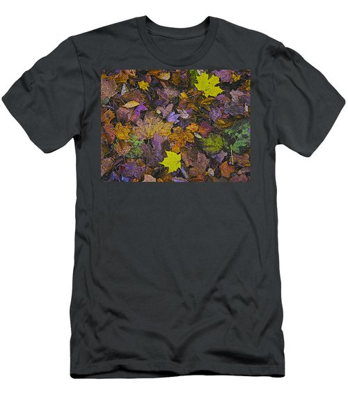 Autumn Leaves At Side Of Road Men's T-Shirt (Athletic Fit)