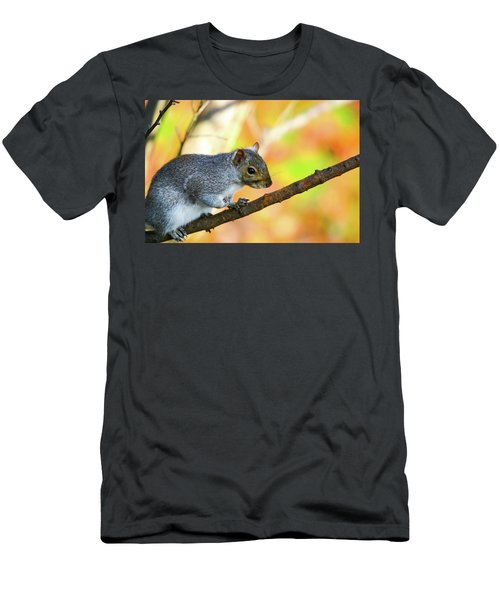 Men's T-Shirt (Slim Fit) featuring the photograph Autumn Squirrel by Karol Livote