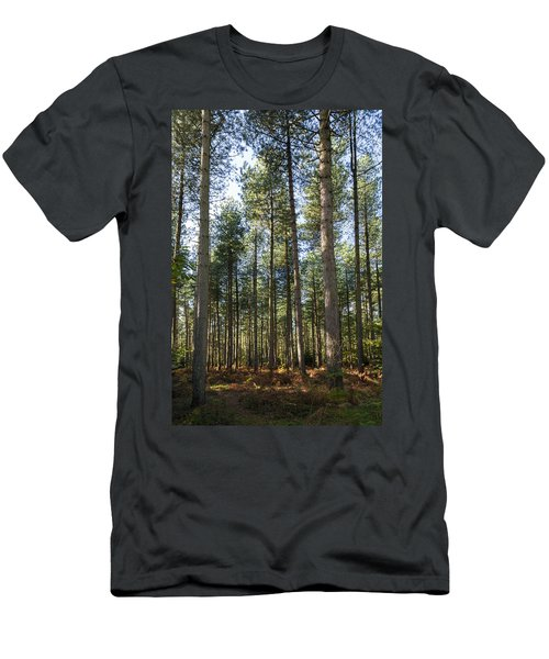 Autumn Tranquil Forest Men's T-Shirt (Athletic Fit)