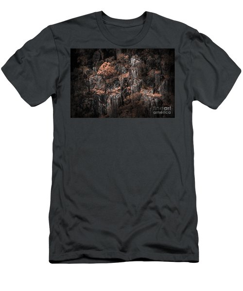 Autumn Trees Growing On Mountain Rocks Men's T-Shirt (Athletic Fit)