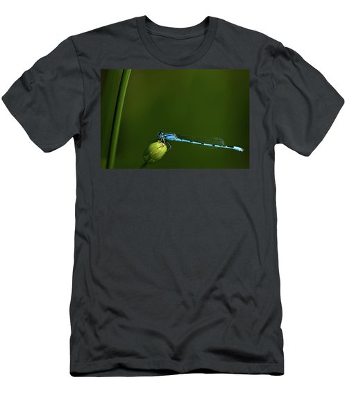 Azure Damselfly-coenagrion Puella Men's T-Shirt (Athletic Fit)