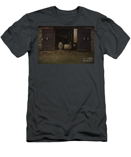 Ba Ram Ewe Men's T-Shirt (Athletic Fit)