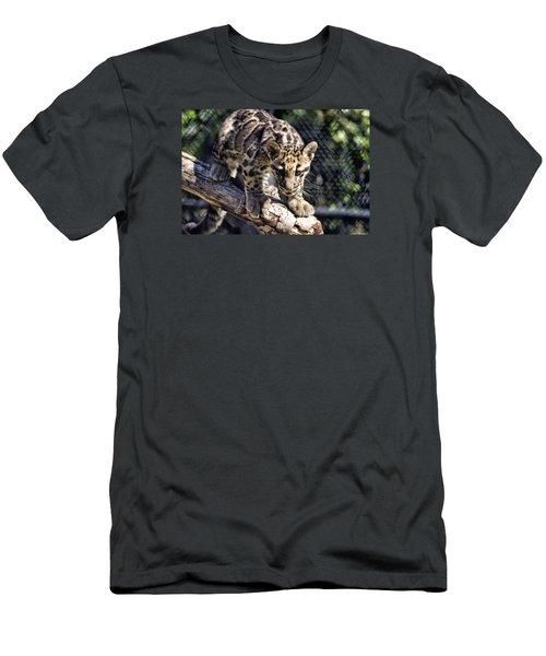 Baby Clouded Leopard Men's T-Shirt (Athletic Fit)