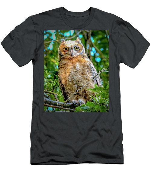 Baby Great Horned Owl Men's T-Shirt (Athletic Fit)