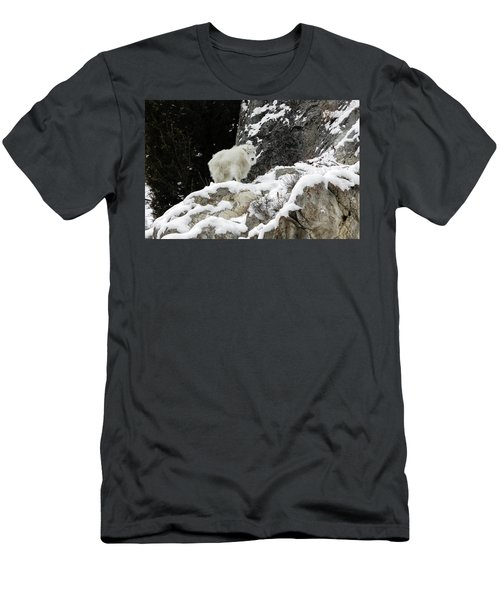 Men's T-Shirt (Athletic Fit) featuring the photograph Baby Mountain Goat by Ronnie and Frances Howard
