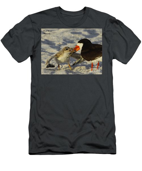 Baby Skimmer Feeding Men's T-Shirt (Athletic Fit)