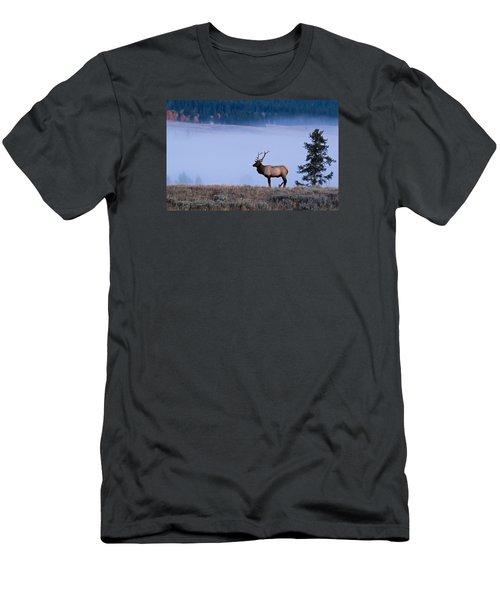Bachelor Days Men's T-Shirt (Athletic Fit)