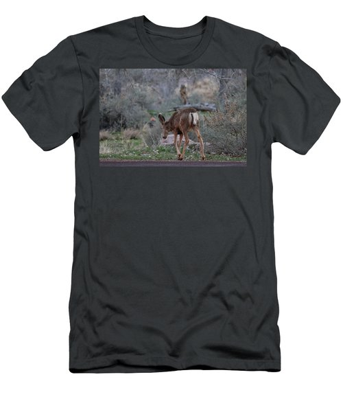 Back Into The Woods - 2 Men's T-Shirt (Athletic Fit)