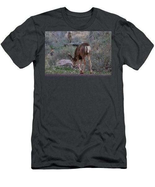 Back Into The Woods Men's T-Shirt (Athletic Fit)