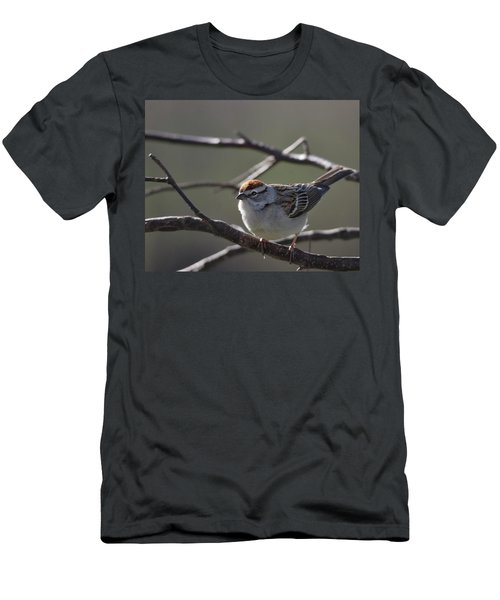 Men's T-Shirt (Slim Fit) featuring the photograph Backlit Chipping Sparrow by Susan Capuano